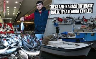 """""""Kestane Karası Fırtınası"""" Balık Fiyatlarını Etkiledi"""