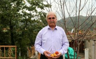 Köyünden 15 yıl sonra Afrinli çocuklar için çıktı