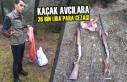 Kaçak Avcılara 36 Bin Lira Para Cezası