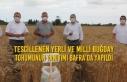 Tescillenen Yerli ve Milli Buğday Tohumunun Tanıtımı...