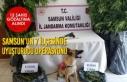 Samsun'un 7 İlçesinde Uyuşturucu Operasyonu;...