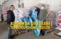 Alaçam'da Çiftçilere Yem Bitkisi Tohumu Dağıtıldı