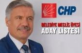 CHP Bafra Belediye Meclis Üyesi Aday Listesi