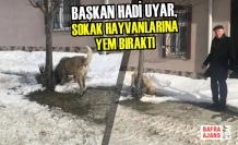 Başkan Uyar, Sokak Hayvanlarına Yem Bıraktı