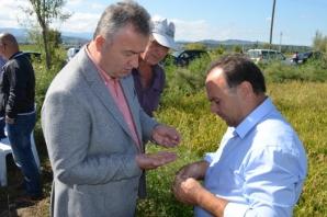 19 Mayıs İlçesine Biçilen Rol Tarım ve Turizm