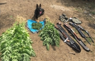 Samsun'da Uyuşturucu Operasyonu; 3 Şüpheli...