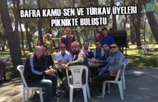 Bafra Kamu-Sen ve Türkav Üyeleri Piknikte Buluştu