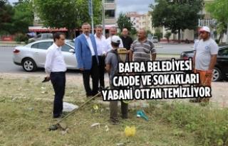 Bafra Belediyesi Cadde ve Sokakları Yabani Ottan...