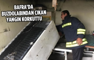 Bafra'da Buzdolabından Çıkan Yangın Korkuttu