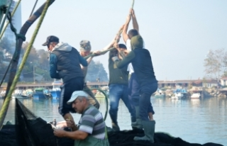 Balıkçılar bu kez hamsi için