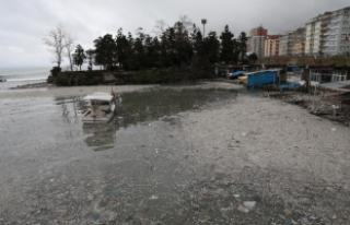 Deniz yüzeyi çöplerle kaplandı