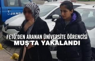 FETÖ'den Aranan Üniversite Öğrencisi Muş'ta...