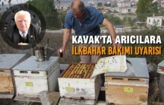 Kavak'ta Arıcılara İlkbahar Bakımı Uyarısı
