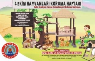 Bafra Hayvan Hakları Koruma Gününe Farklı Hazırlanıyor