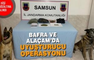 Bafra ve Alaçam'da Uyuşturucu Operasyonu
