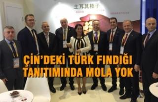 Çin'deki Türk Fındığı Tanıtımında Mola...
