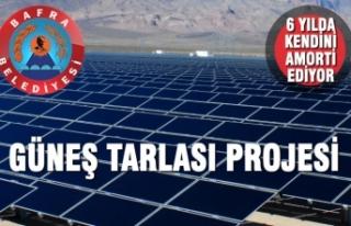 Bafra Belediyesi Güneş Tarlası İçin Adımlarını...