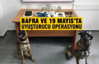 Bafra ve 19 Mayıs'ta Uyuşturucu Operasyonu