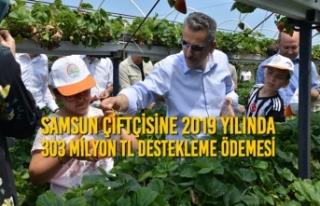 Samsun Çiftçisine 2019 Yılında 303 Milyon TL Destekleme...