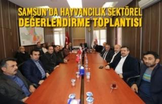 Samsun'da Hayvancılık Sektörel Değerlendirme...