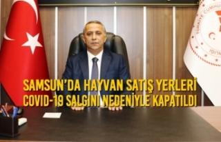 Samsun'da Hayvan Satış Yerleri Kapatıldı