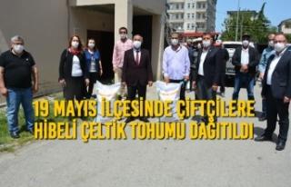 19 Mayıs İlçesinde Çiftçilere Hibeli Çeltik...