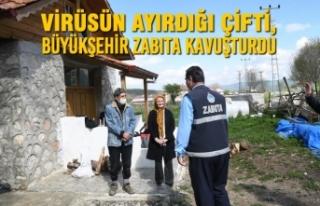 Virüsün Ayırdığı Çifti, Büyükşehir Zabıta...