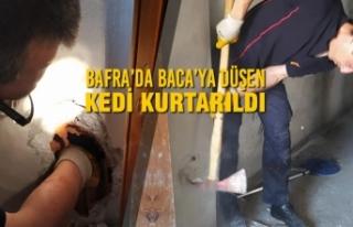 Bafra'da Baca'ya Düşen Kedi Kurtarıldı