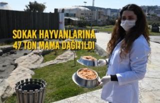 Sokak Hayvanlarına 47 Ton Mama Dağıtıldı