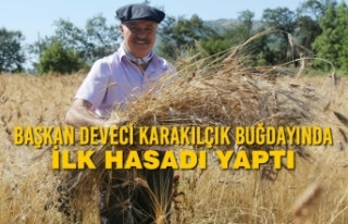 Başkan Cemil Deveci Karakılçık Buğdayında İlk...