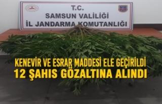 Samsun'da Kenevir ve Esrar Maddesi Ele Geçirildi;...