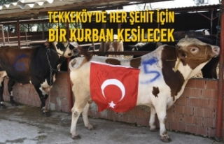 Tekkeköy'de Her Şehit İçin Bir Kurban Kesilecek