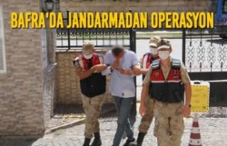 Bafra'da Jandarmadan Operasyon