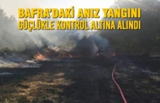 Bafra'daki Anız Yangını Güçlükle Kontrol Altına...