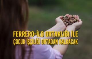 FERRERO-İLO Ortaklığı İle Çocuk İşçiliği...