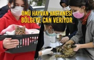 OMÜ Hayvan Hastanesi Bölgeye Can Veriyor