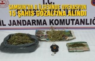 Samsun'da 6 İlçesinde Düzenlenen Operasyonlarda...