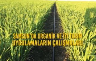 Samsun'da Organik ve İyi Tarım Uygulamalarının...
