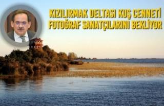 Kızılırmak Deltası Kuş Cenneti Fotoğraf Sanatçılarını...