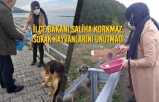 Bakan Saliha Korkmaz, Sokak Hayvanlarını Unutmadı