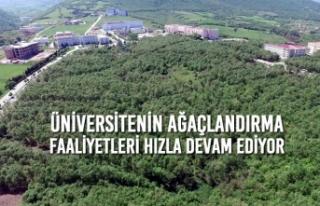 Üniversitenin Ağaçlandırma Faaliyetleri Hızla...