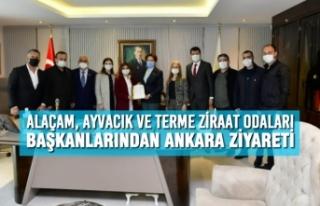 Alaçam, Ayvacık ve Terme Ziraat Odaları Başkanlarından...