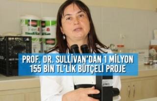 Prof. Dr. Sullivan'dan 1 milyon 155 bin TL'lik...