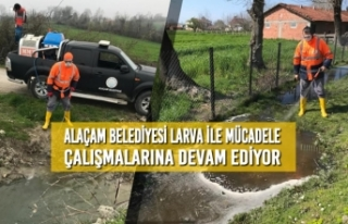 Alaçam Belediyesi Larva İle Mücadele Çalışmalarına...