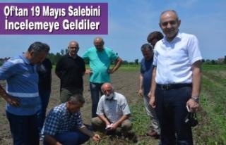 Of'tan 19 Mayıs Salebini İncelemeye Geldiler