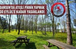 Samsun'da Ateşli Piknik Yapmak 30 Eylül'e Kadar...