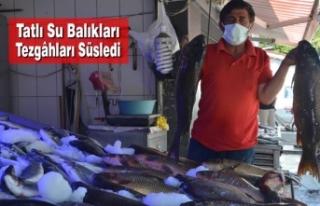 Tatlı Su Balıkları Tezgâhları Süsledi
