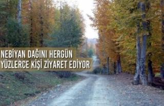 Nebiyan Dağını Hergün Yüzlerce Kişi Ziyaret...