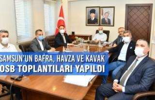 Samsun'un Bafra, Havza ve Kavak OSB Toplantıları...