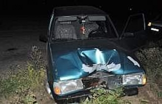 Otomobil Telefon Direğine Çarptı: 1 Yaralı